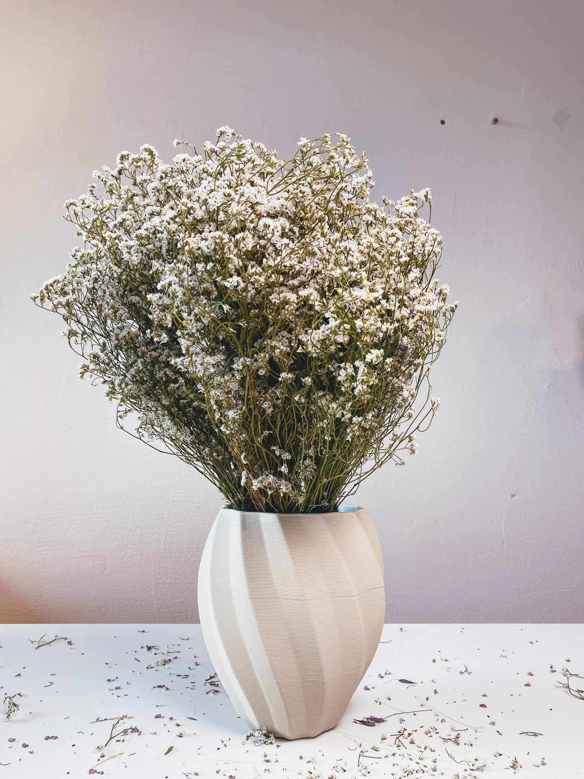 WCKD/a Vase with dried flowers
